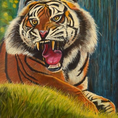 Kevin's Tiger